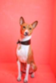 Newsletter photobooth dog Argo.jpg