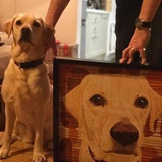 8b Bow Labrador with artwork.jpg
