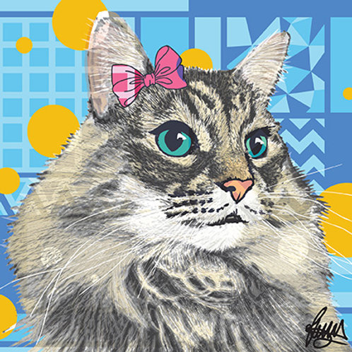 Aslun Maincoon Cat