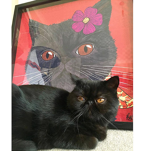 8 Rose Hill Designs pets with artwork CI