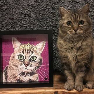 10 Rose Hill Designs pets with artwork T