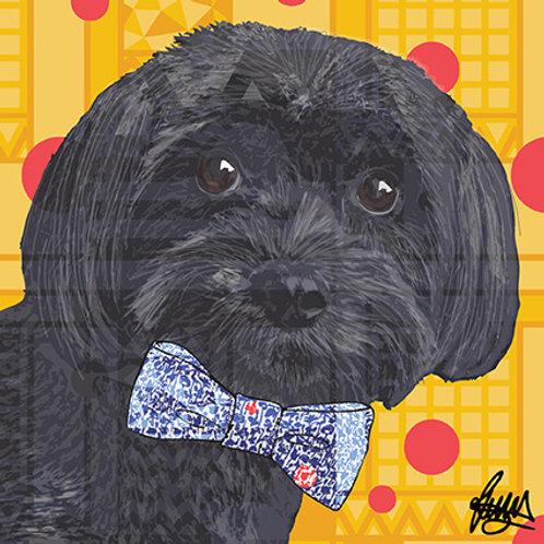 George Black Dog