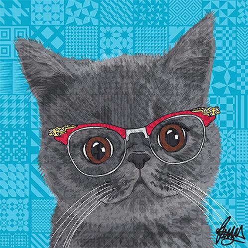 Gina Exotic Short Hair Cat