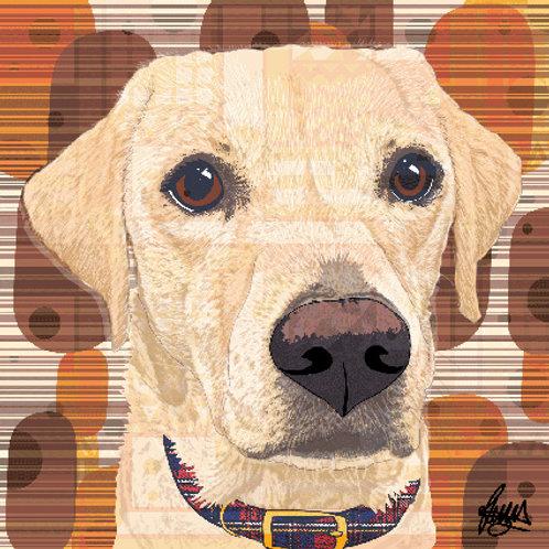 Bow Labrador Dog
