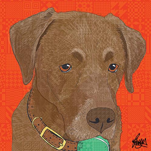 Arthur Chocolate Labrador Dog