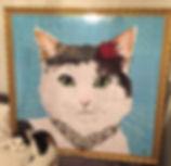 Pet portrait Lucy black & white cat with
