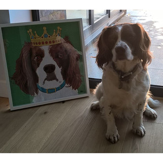 9 Rose Hill Designs pets with artwork BO