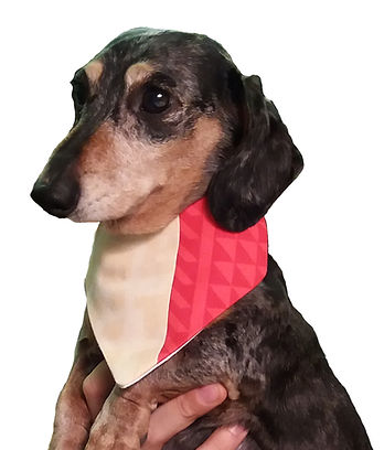 Rose Hill Designs Neckerchief 2 Mr Big.j