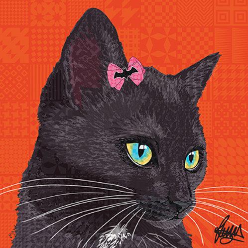 Billi Black Cat