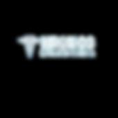 kronos logo.png