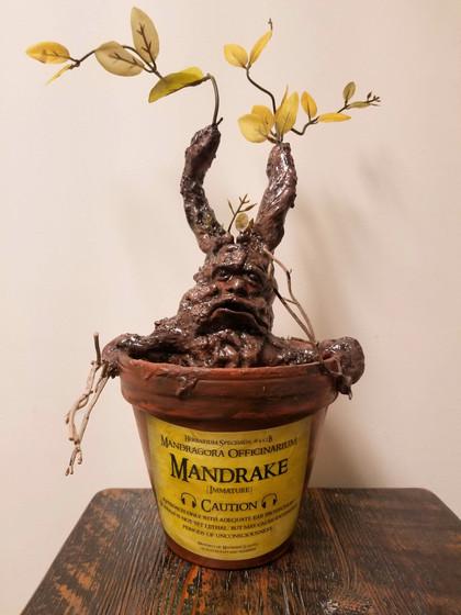 Mandrake Root Sculpture