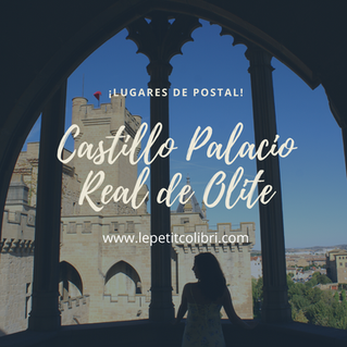 LUGARES DE POSTAL: CASTILLO DE OLITE