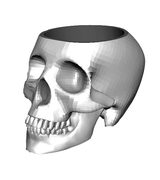 Skull3d_Smooth