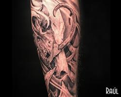 Babirusa Tattoo Raul