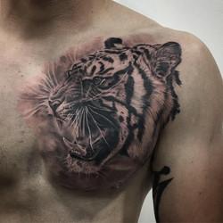 Tigre Tattoo 2