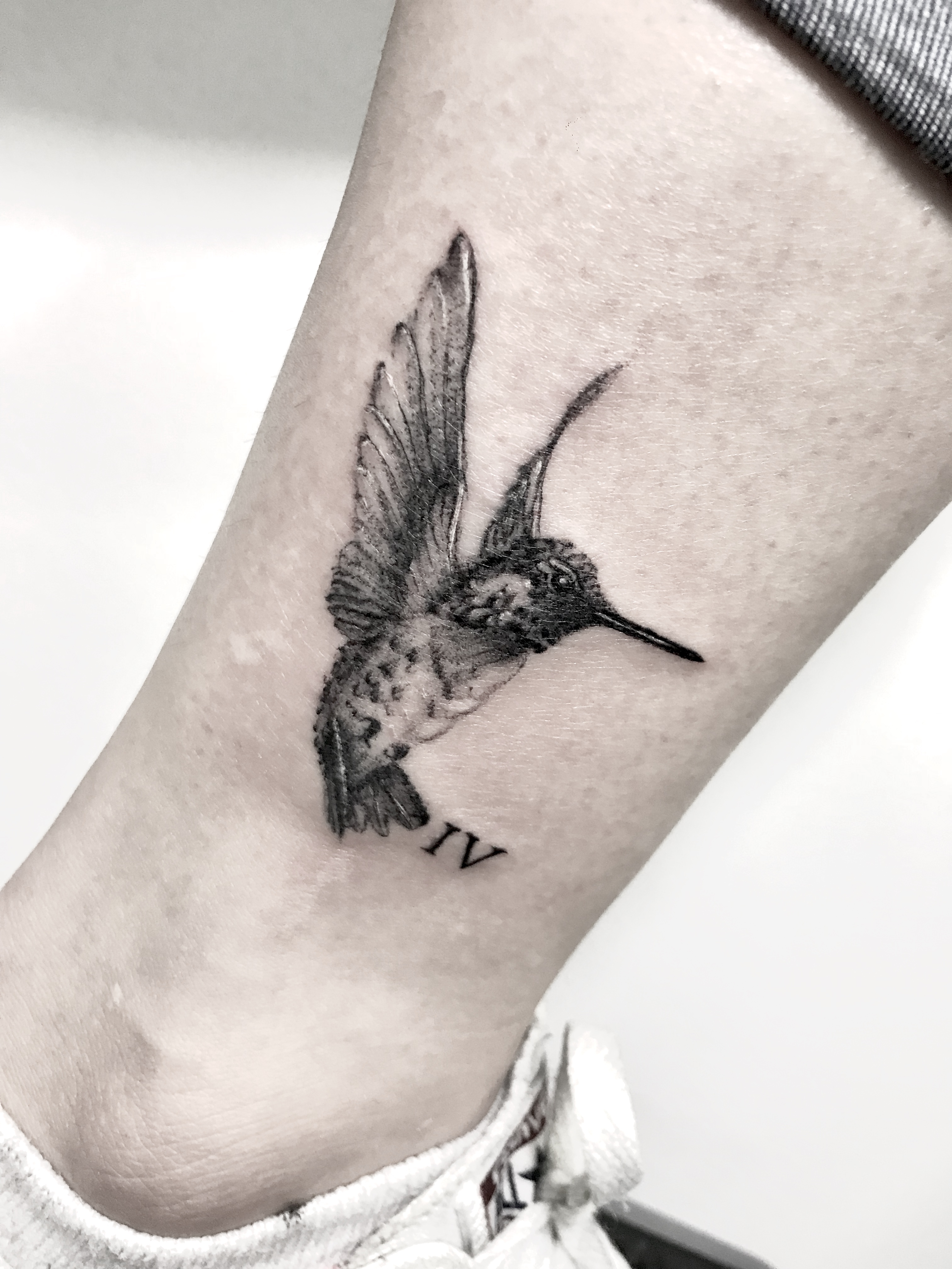 Hummingbird blackwork