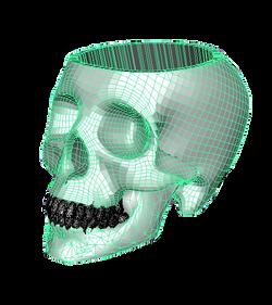 Skull3d_wireframe