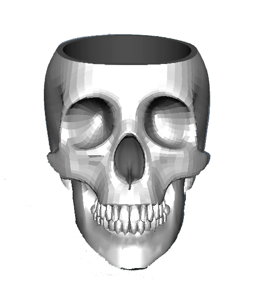 Skull3d_Front_Smooth