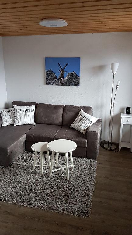 Wohnzimmer Steinbock hochformat.jpg