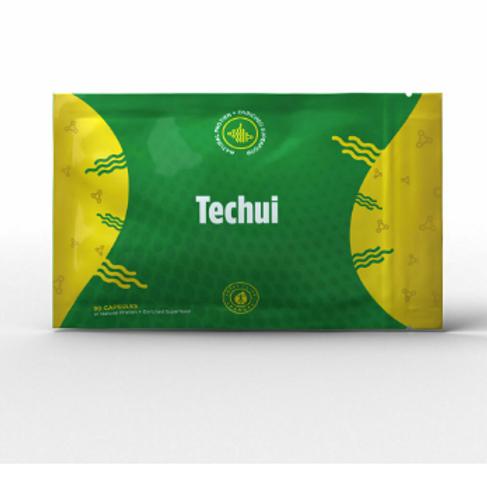 TECHUI (Gain Weight Fast!)