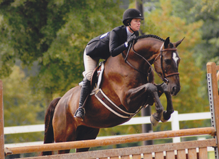 June 4-5 Hunter Jumper Summer Clinics