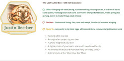 The Leaf Cutter Bee List_Adopt A Bee_FY1