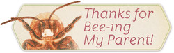 Thanks-ONLY-Hex_bad-attention-bee_FY18