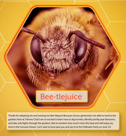 Adopt_A_Bee_Beetlejuice