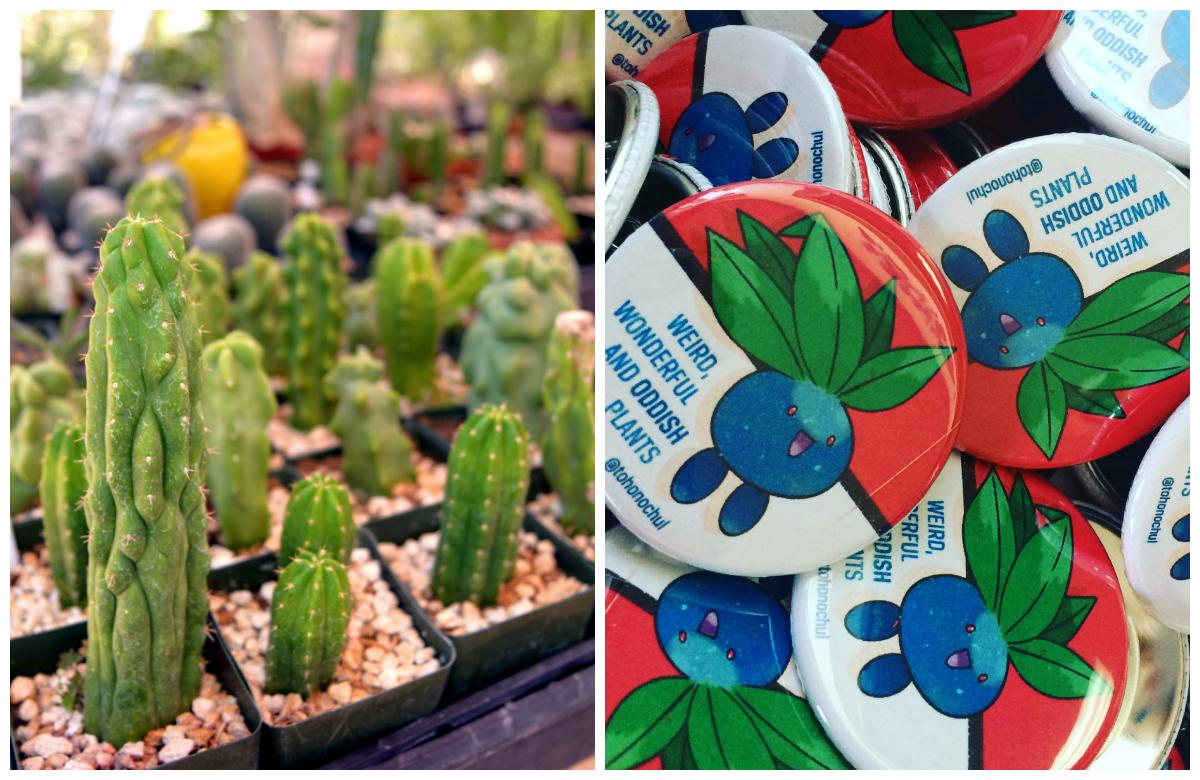 Plants & Pokemon Pins