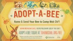 Adopt A Bee Slide