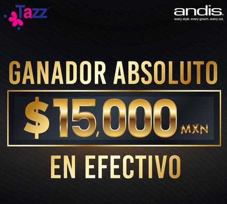 Premio Ganador Absoluto Edición 2018