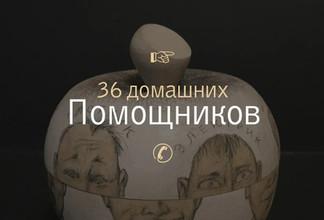 Михаил Капралов. 36 помощников. Шкатулка мастеров на все руки