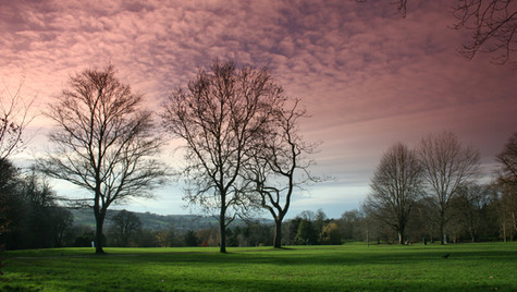 Victoria Park by Mark Blezard