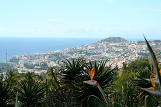 Funchal City Madeira sight seeing