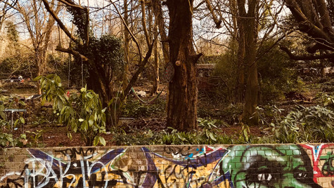 Nature meets the urban artist