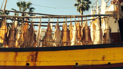 Camara de Lobos by Mark Blezard