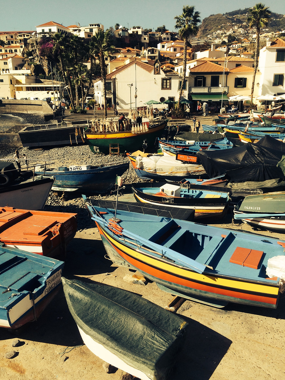 Camara de Lobos by Mark Blezard