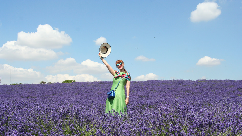 Happy in Lavender
