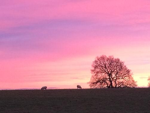 Sunsets by Mark Blezard