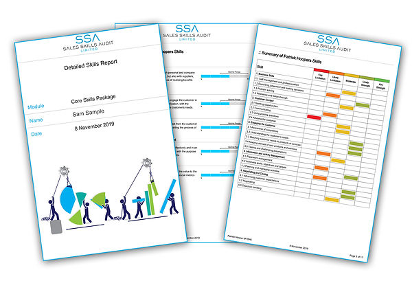 A sales assessment report should be easy to read