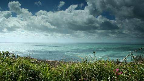 Mullion Coastline by Mark Blezard