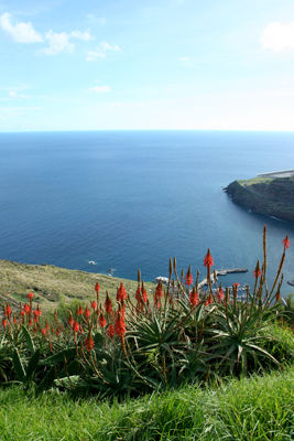 Images of Madeira Island, Portugal, by Mark Blezard
