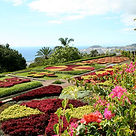 The Botanical Gardens of Madeira