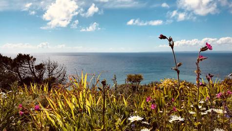Polurrian Cliffs as seen from Polurrian Hotel