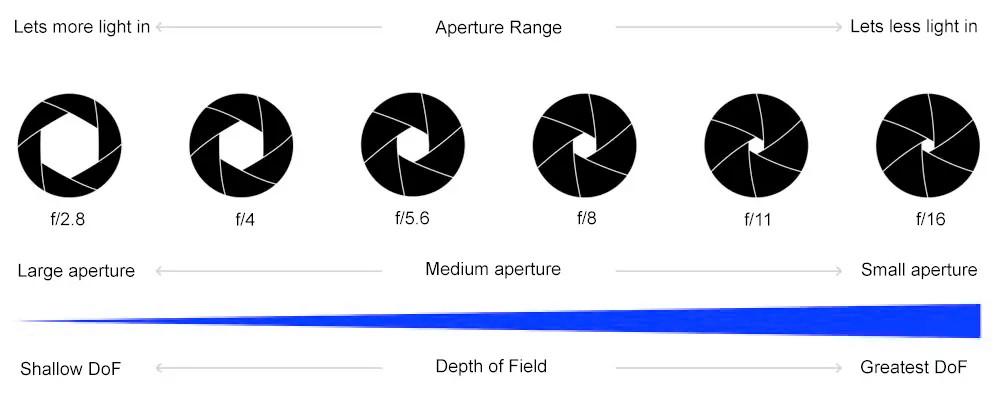 Understanding Depth of Field by Mark Blezard