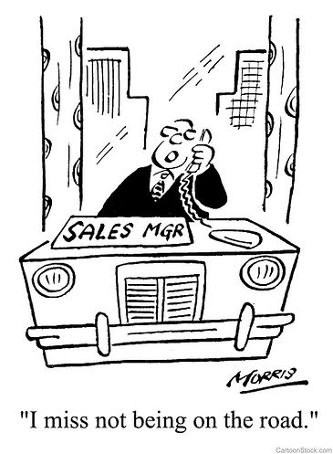 Understanding Your Company's Sales Roles.  Enterprise Manager;  Account Manager;  Sales Manager;  Sales Account Manager