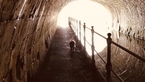 Mark Blezard captures 'Light at the end of the tunnel'