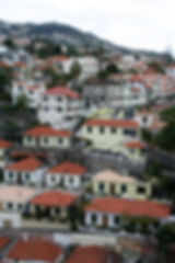 Images of Madeira Island, Portugal