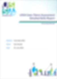 Download a sample sales assessment report