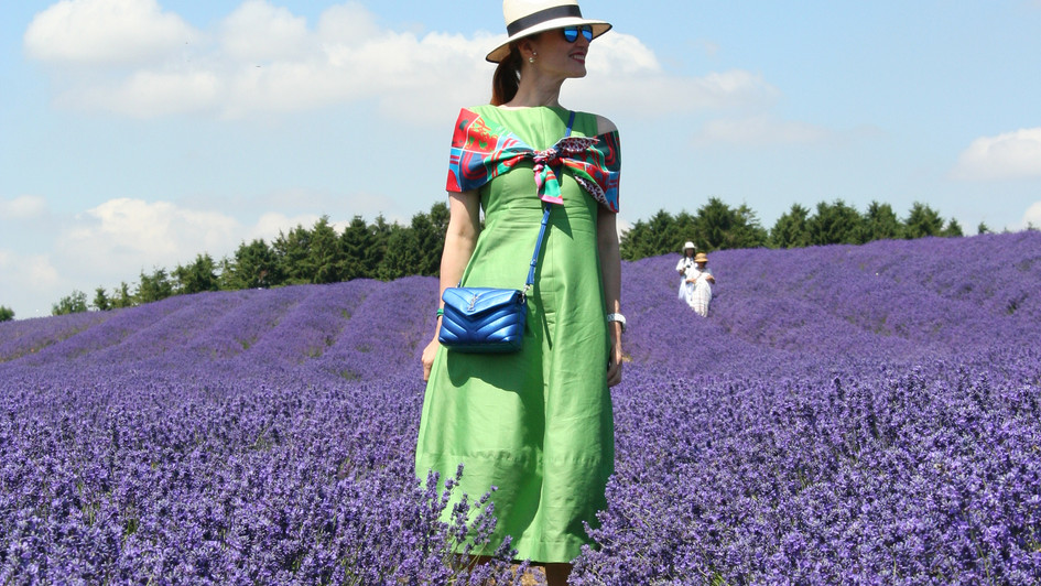 Lady and the lavander fields